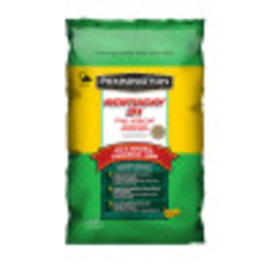 Pennington Kentucky 31 Tall Fescue Penkoted Grass Seed 24ea/10 lb