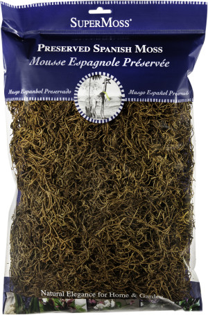 Supermoss Spanish Moss Preserved Coffee 10ea/8 oz
