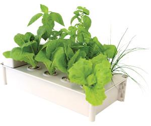 Hydrofarm Jump Start Salad Box Hydroponic Garden Kit 4ea