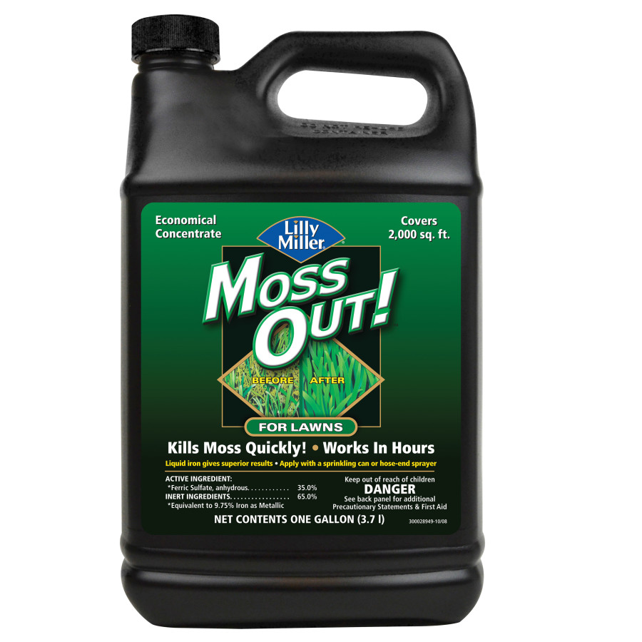 Lilly Miller Moss Out! For Lawns Concentrate 4ea/1 gal
