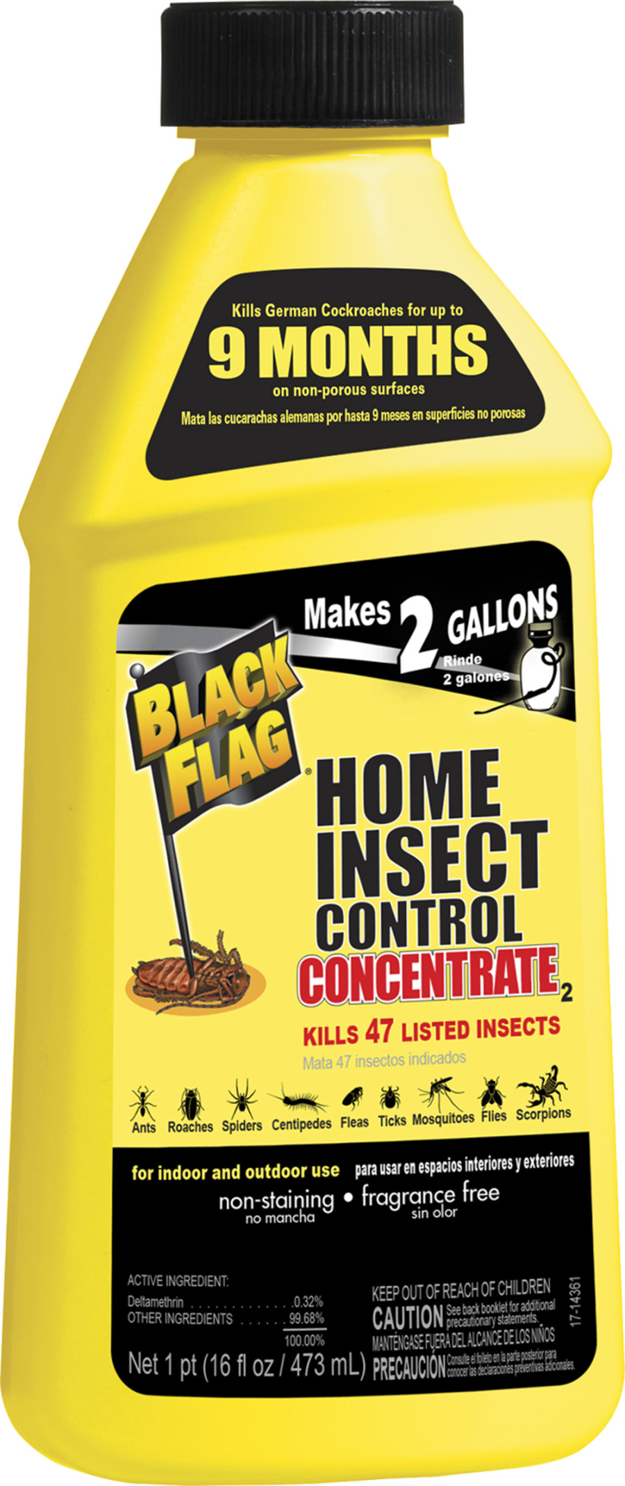 Black Flag Home Insect Control Concentrate 6ea/16 oz