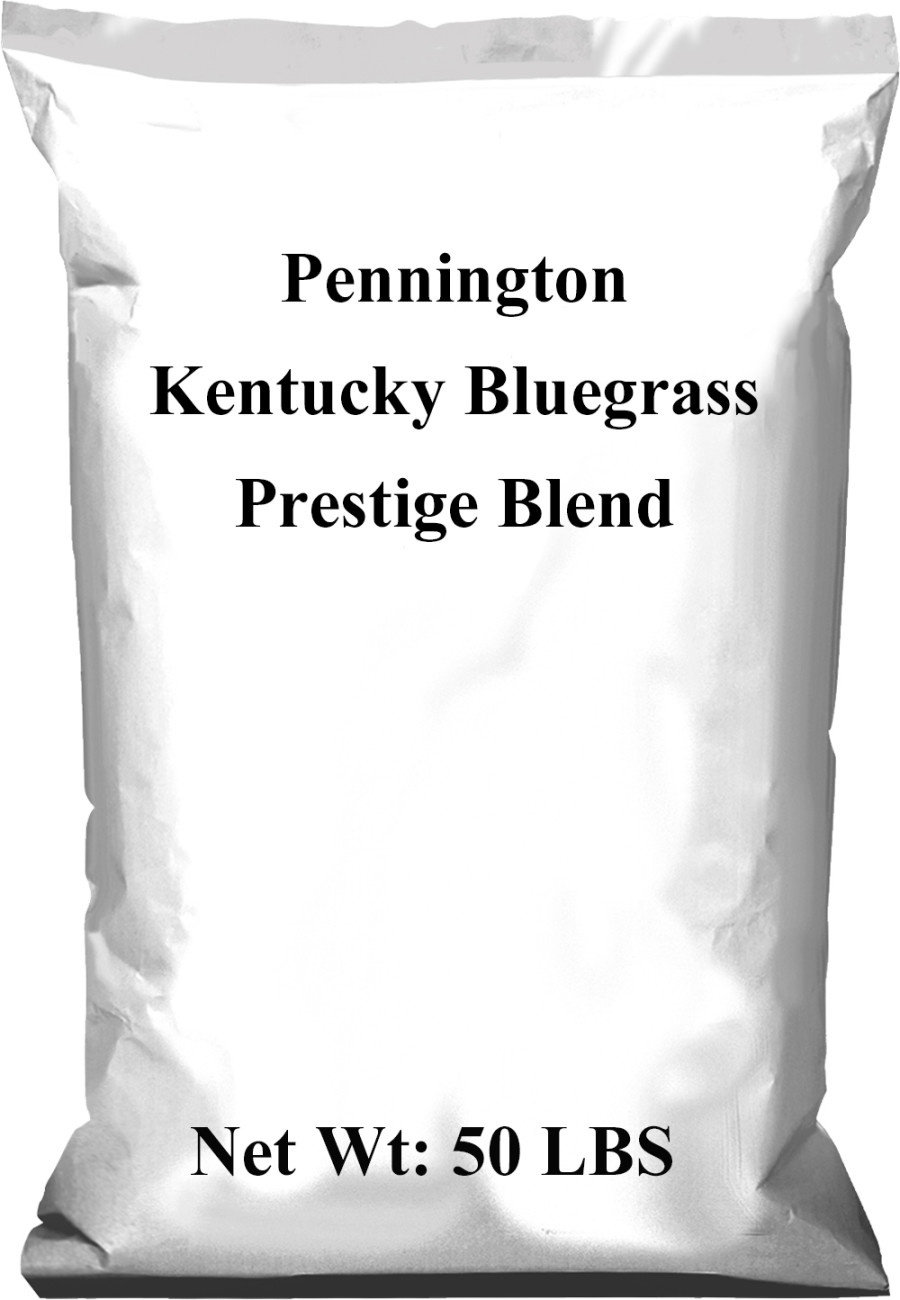 Pennington Prestige Kentucky Bluegrass Blend 1ea/50 lb