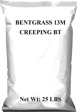 Pennington Bentgrass Creeping 13M BT 1ea/25 lb