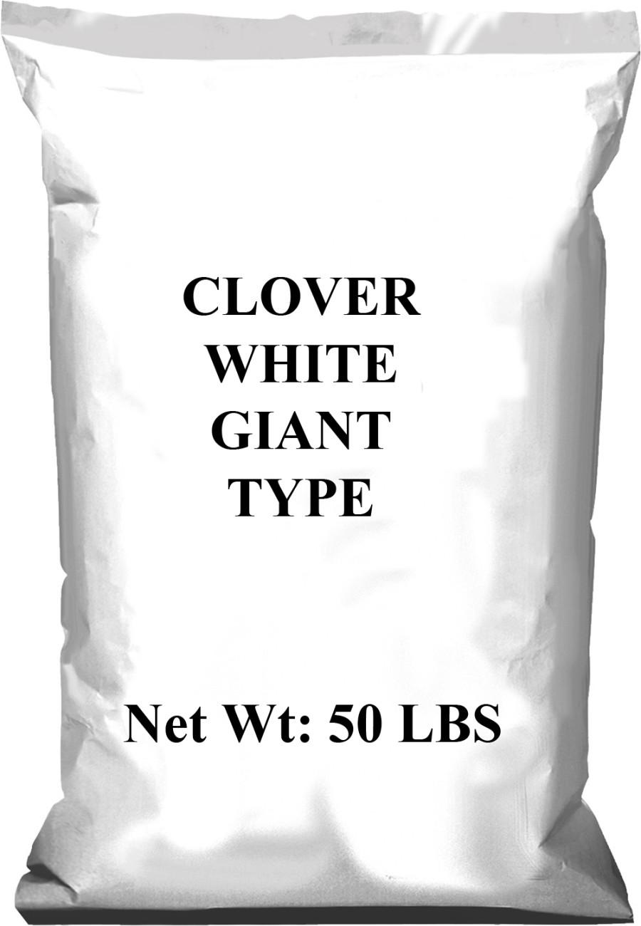 Pennington Clover Giant Type White 1ea/50 lb
