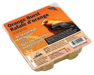 Heath Outdoor Products Orange Burst Suet Cake 12ea/11.25 oz