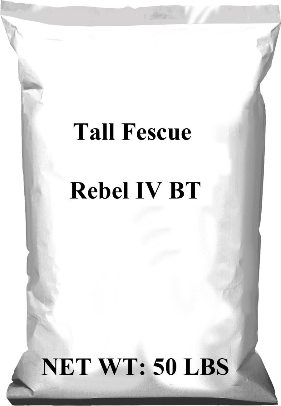 Pennington Rebel Tall Fescue IV BT 1ea/50 lb