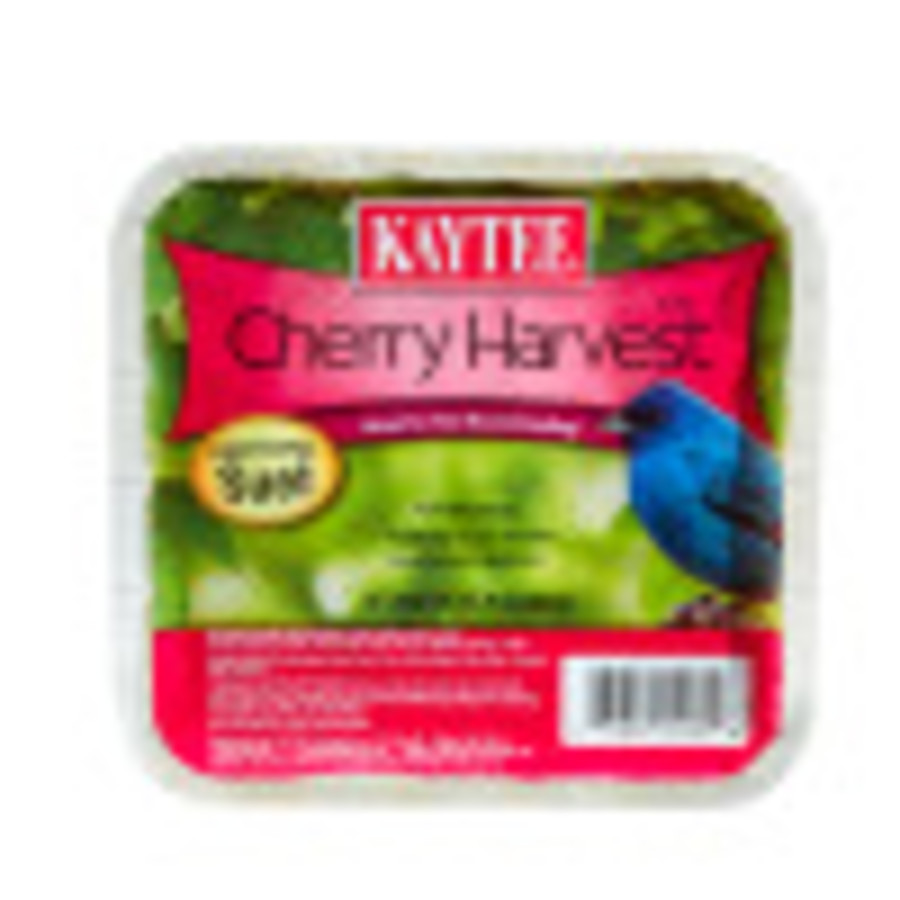 Kaytee Cherry Harvest High Energy Suet 12ea/11.75 oz