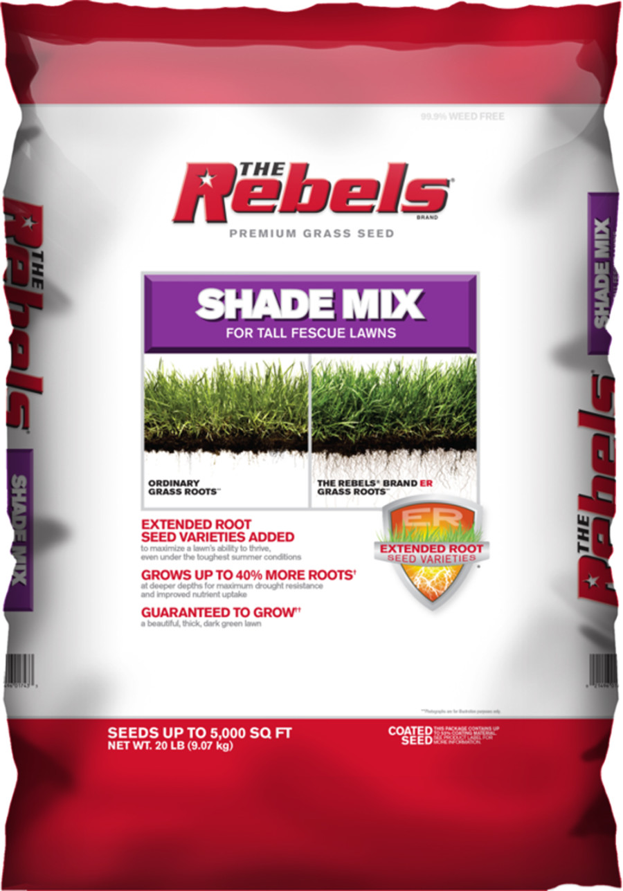 The Rebels Shade Mix for Tall Fescue Lawns Grass Seed Powder Coated 1ea/20 lb