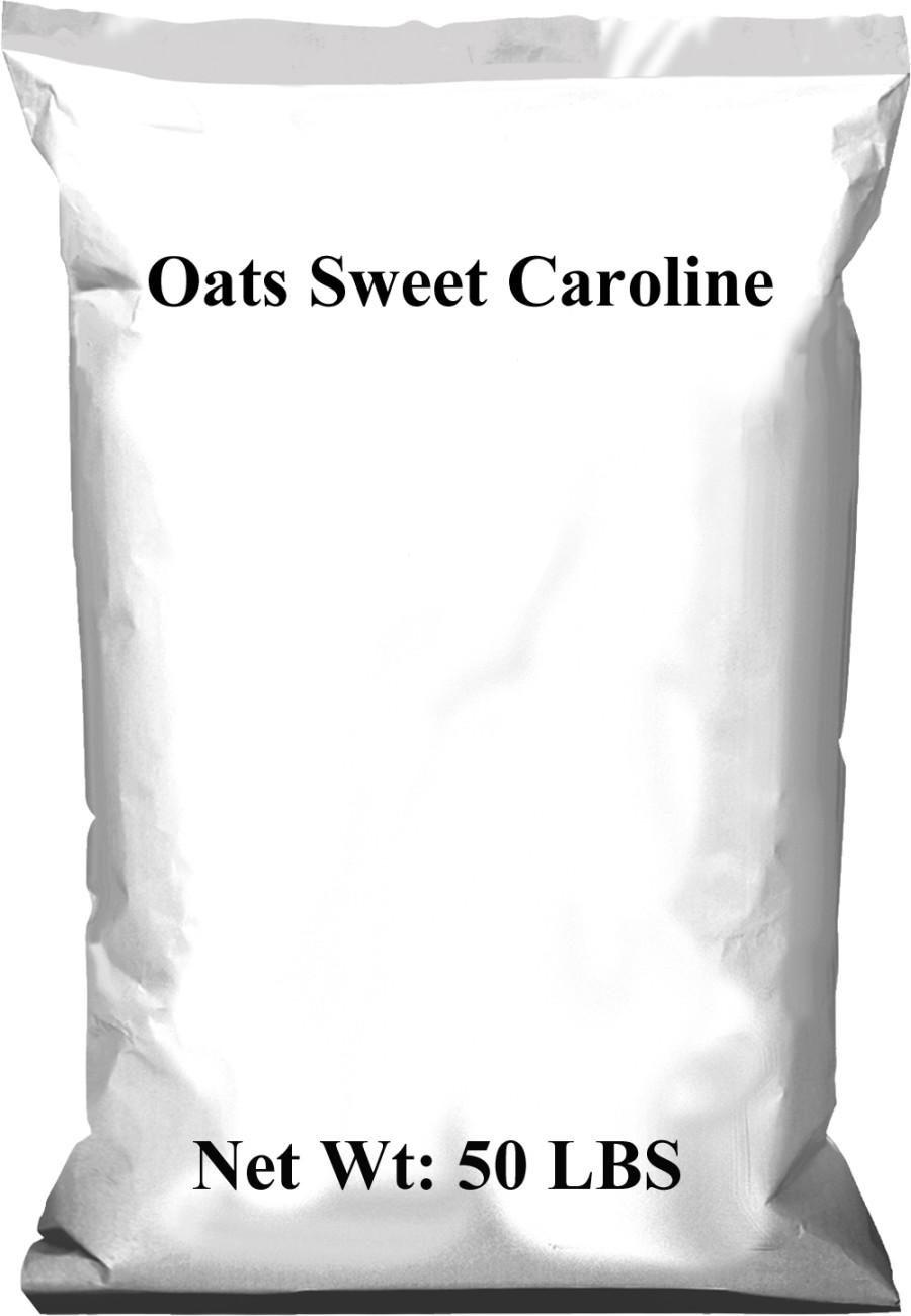 Pennington Oats Sweet Caroline 1ea/50 lb