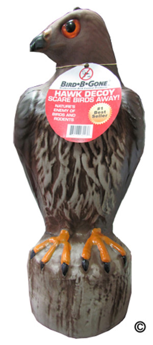 Bird-B-Gone Hawk Decoy Multi-Color 6ea/21 In (L) X 14 In (W) X 17 In (H)