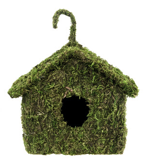 Supermoss Maison Deco Birdhouse Fresh Green 6ea/7Inx7 in