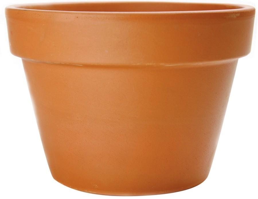 Pennington Fern Azalea Pot Terra Cotta 1ea/10.5 in