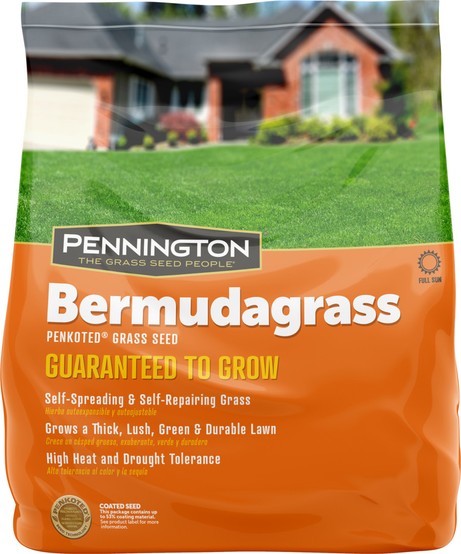 Pennington Bermudagrass Grass Seed 15ea/1 lb