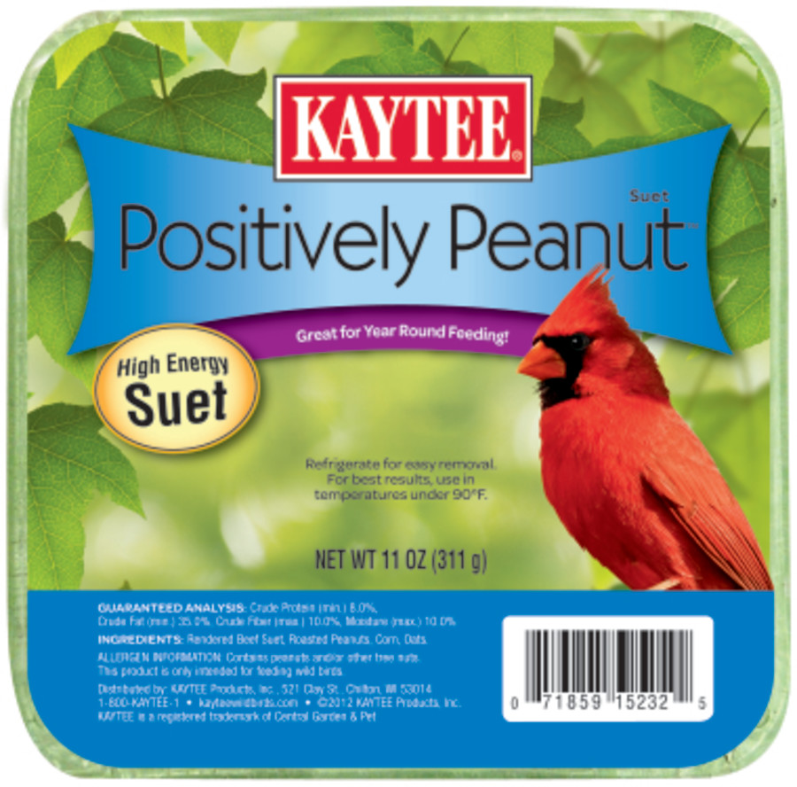 Kaytee Positively Peanut High Energy Mini Suet 12ea/11 oz
