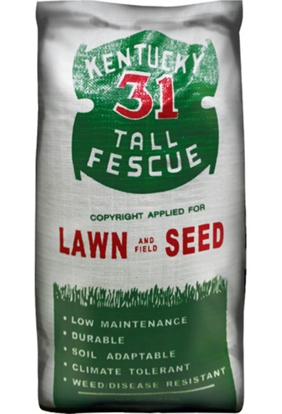 Pennington Kentucky 31 Tall Fescue Lawn and Field Seed 95% Pure 1ea/50 lb