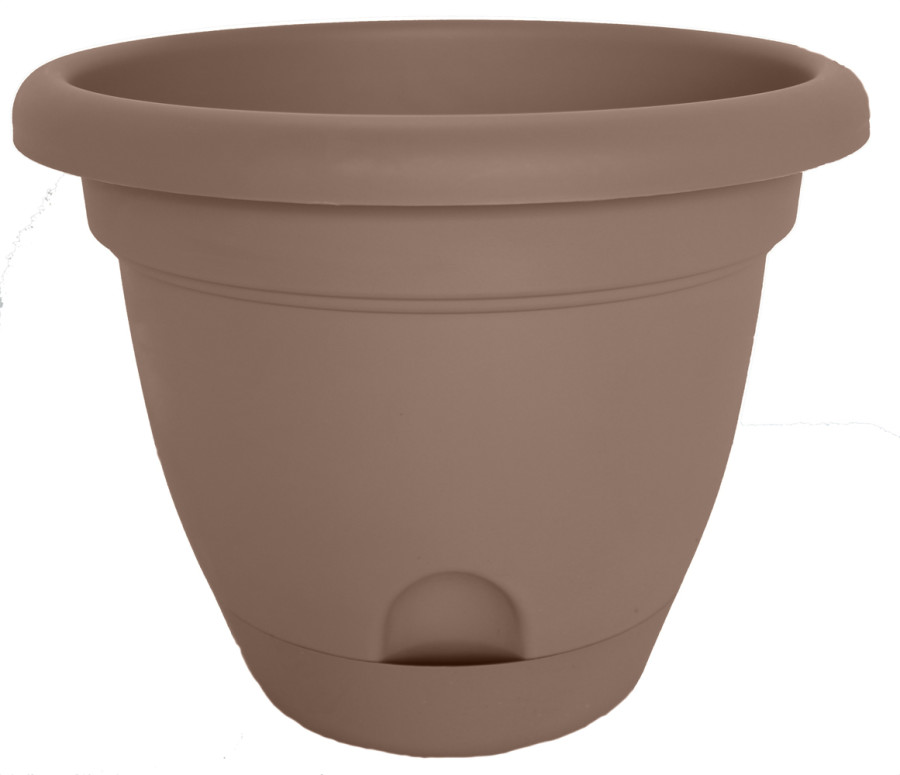 Bloem Lucca Planter Curated 6ea/10 in