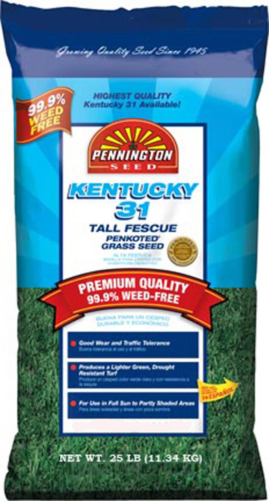 Pennington Kentucky 31 Tall Fescue Penkoted Grass Seed 1ea/20 lb