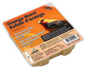 Heath Outdoor Products Orange Burst Suet Cake 12ea/11.25 oz