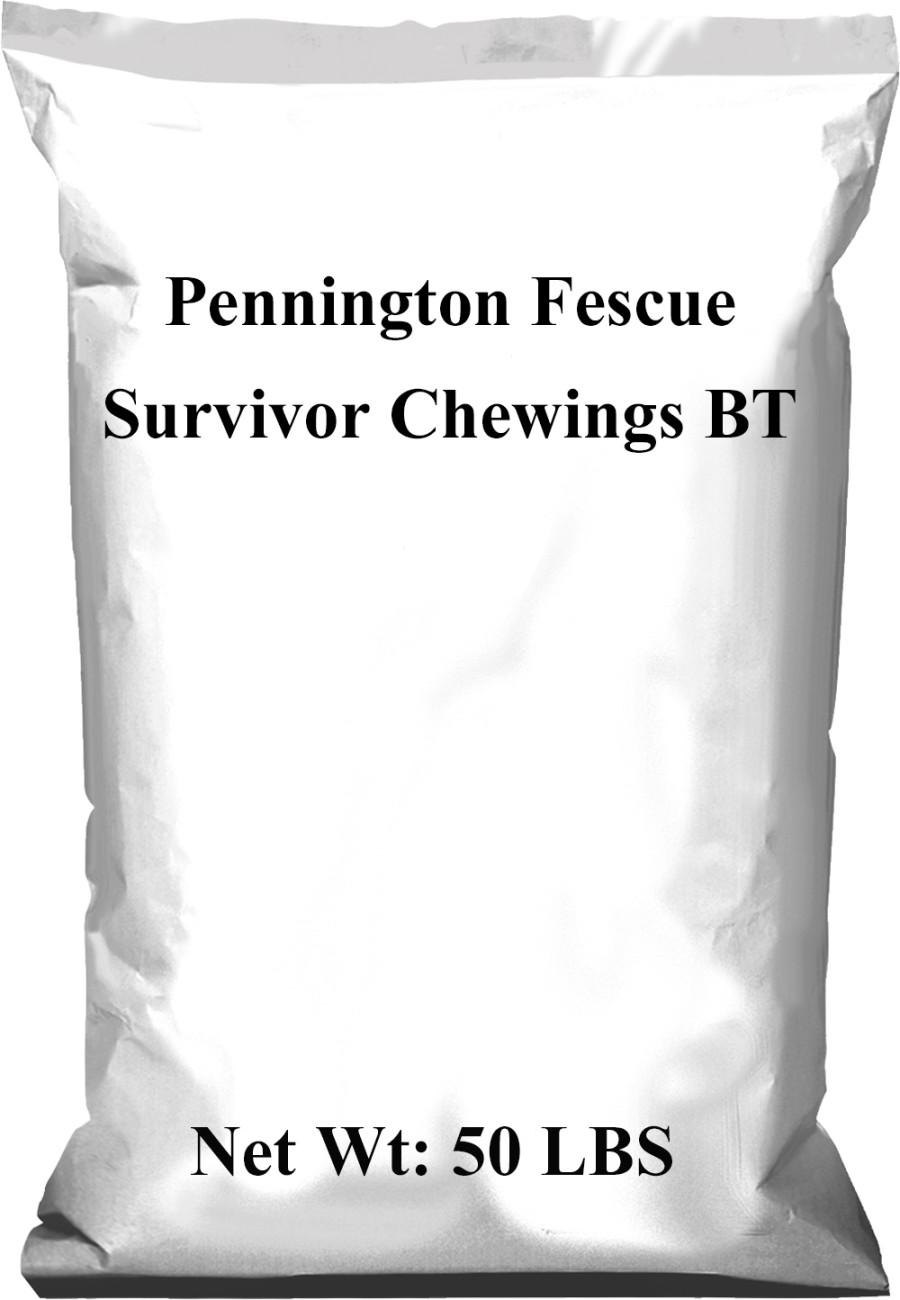 Pennington Fescue Survivor Chewings Grass Seed BT 1ea/50 lb