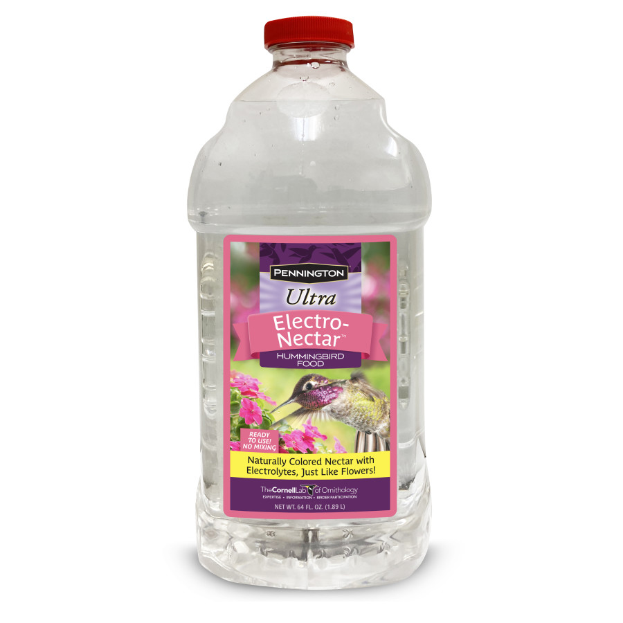 Pennington ElectroNectar Hummingbird Food Ready To Use Clear 6ea/64 oz