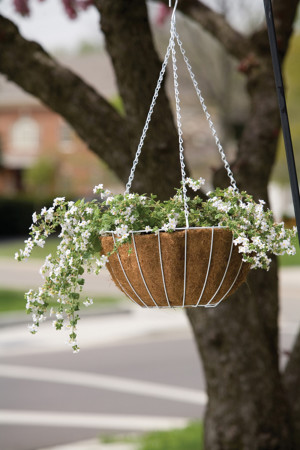 Panacea Growers Hanging Basket With Liner White 12ea/14 in
