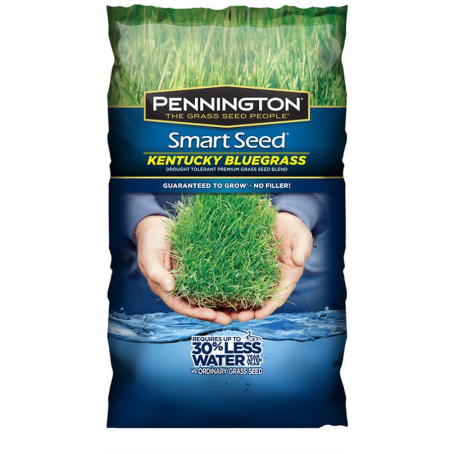 Pennington Smart Seed Kentucky Blue Blend Grass Seed 4ea/7 lb