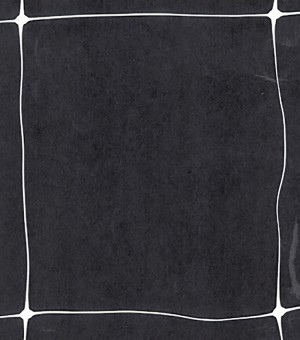 Tenax Hortonova Trellis Net White 1ea/48Inx500 ft