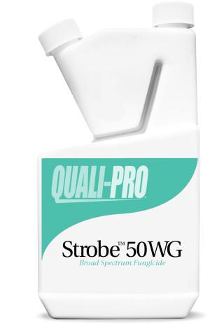 Quali-Pro Strobe 50WG Broad Spectrum Fungicide 6ea/15 fl oz