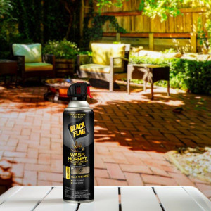 Black Flag Wasp Hornet & Yellow Jacket Killer Aerosol 12ea/14 oz