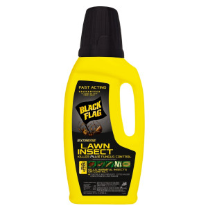 Black Flag Extreme Lawn Insect Killer Plus Fungus Control 1ea/32 fl oz