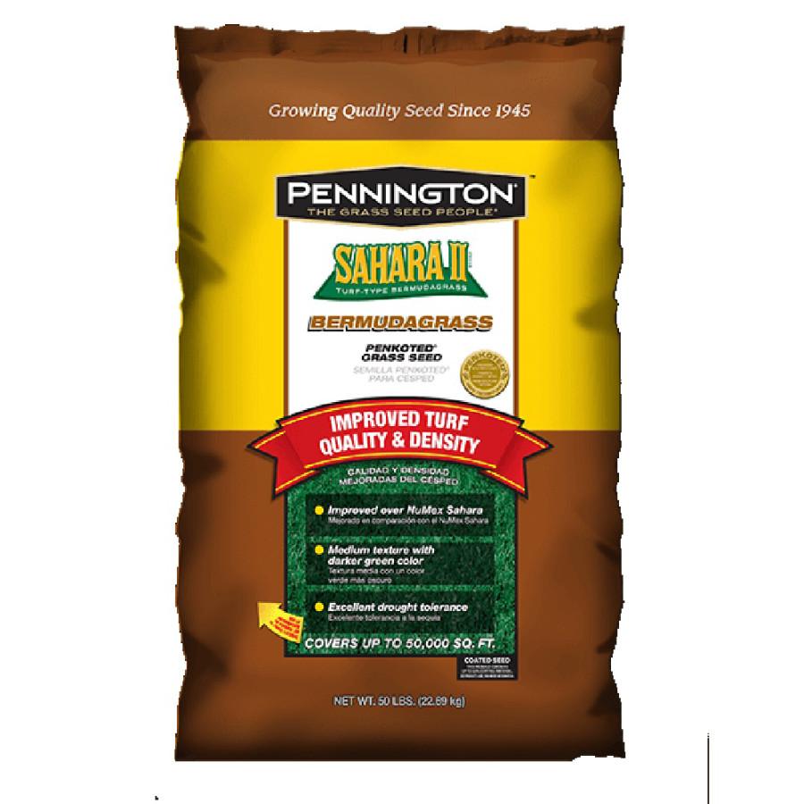 Pennington Sahara II Bermudagrass Penkoted Seed Unhulled 1ea/50 lb