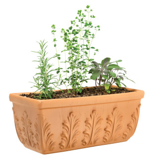 Pennington Window Box Floral Terra Cotta 1ea/18.5 in