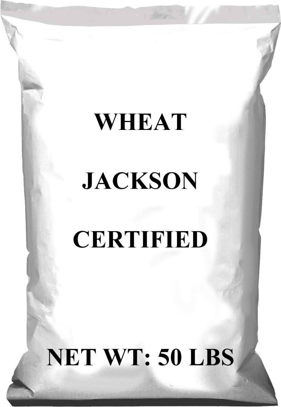 Pennington Wheat Jackson Certified 1ea/50 lb
