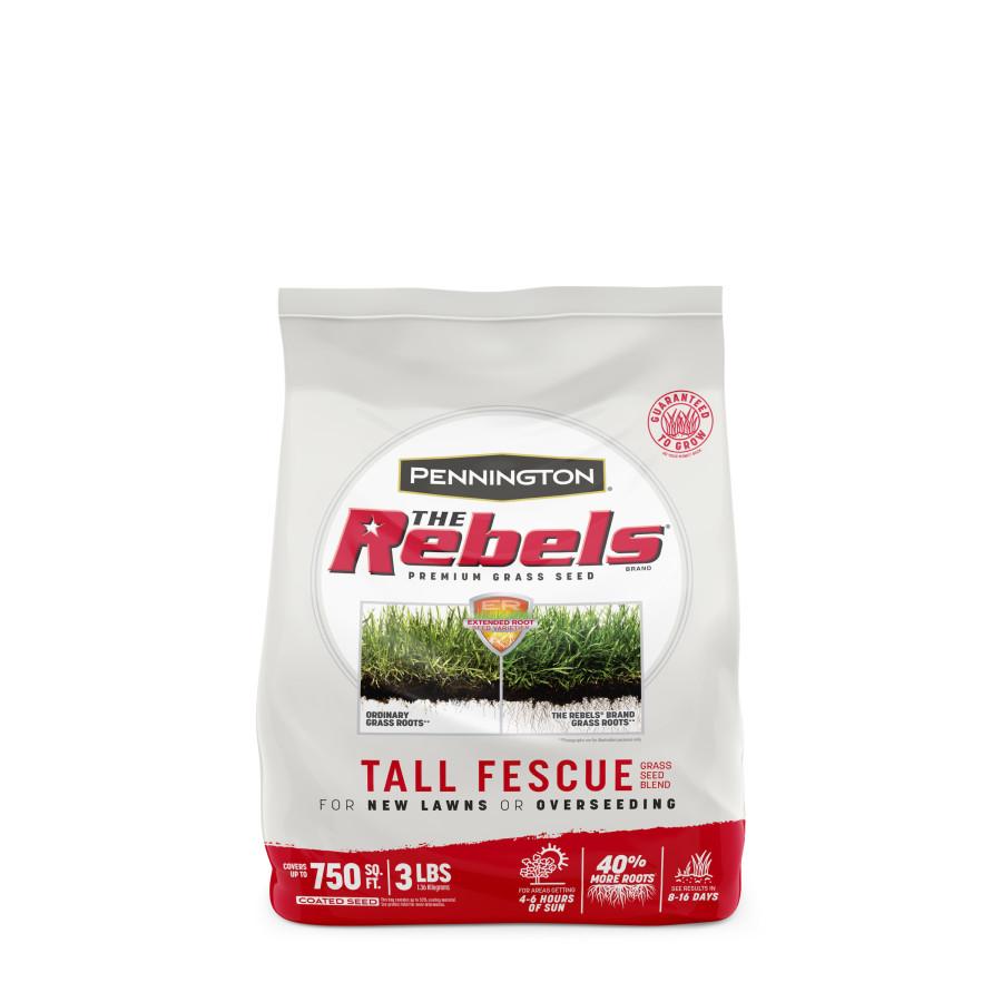 Pennington The Rebels Tall Fescue Grass Seed Mix 1ea/3 lb