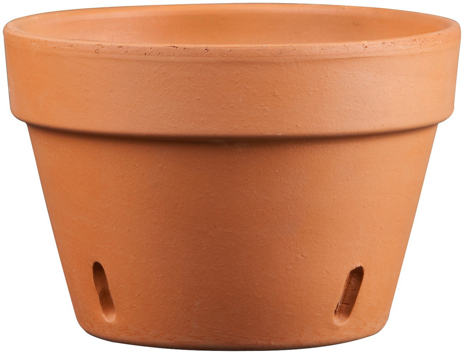 Pennington Orchid Pot Terra Cotta 1ea/8.5 in