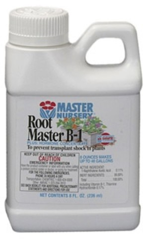 Master Nursery Root Master B1 Plus Hormone Concentrate 12ea/8 fl oz