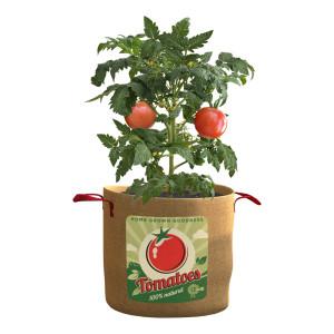 Panacea Tomatoes Grow Bag 12ea/20 gal