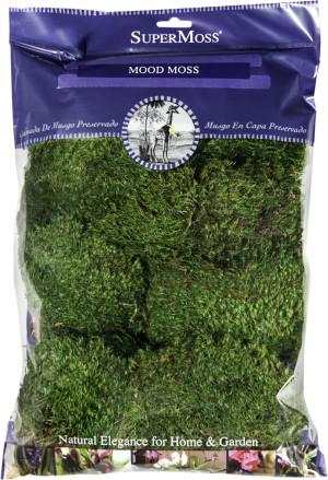 Supermoss Mood Moss Peserved Fresh Green 10ea/8 oz