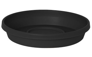 Bloem Terra Saucer Black 10ea/20 in