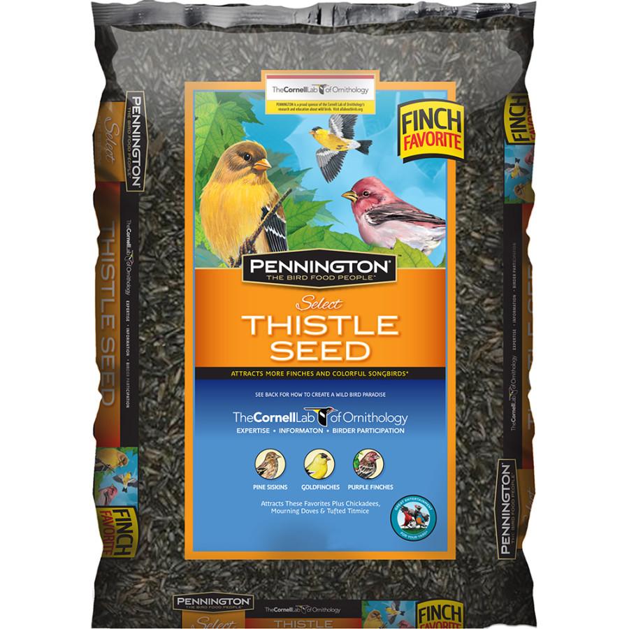 Pennington Premium Thistle Seed Bird Food 12ea/2 lb