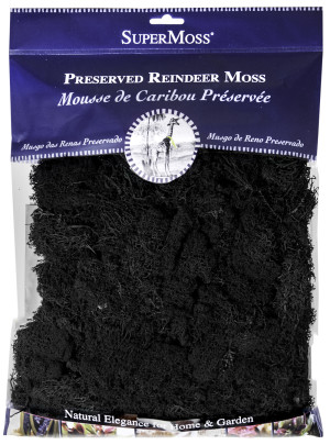 Supermoss Reindeer Moss Preserved Moss Black 10ea/4 oz