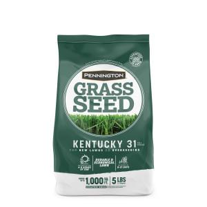 Pennington Kentucky 31 Tall Fescue Penkoted Grass Seed 6ea/5 lb