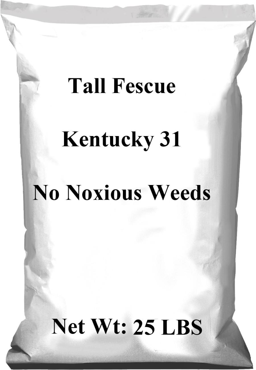 Pennington Tall Fescue Kentucky 31 No Noxious Weeds Seed 1ea/25 lb