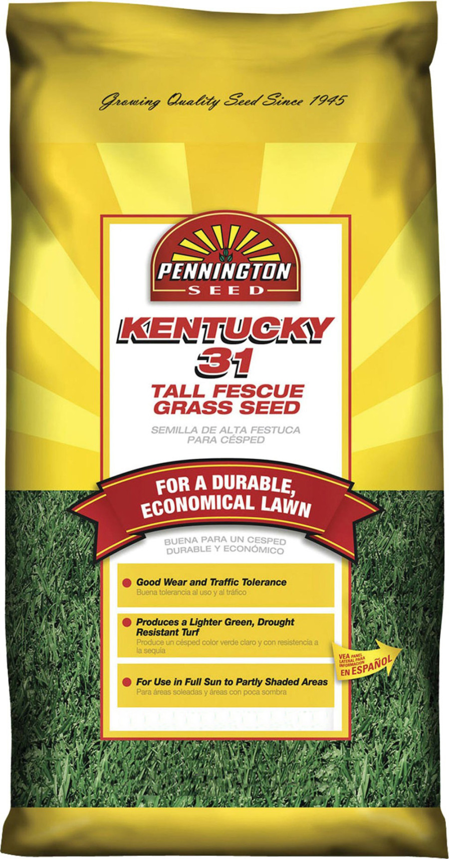 Pennington Kentucky 31 Tall Fescue Grass Seed 40ea/25 lb