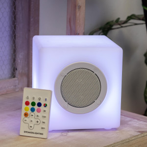 Alpine Master Bluetooth Speaker With LED Light & Remote 2ea