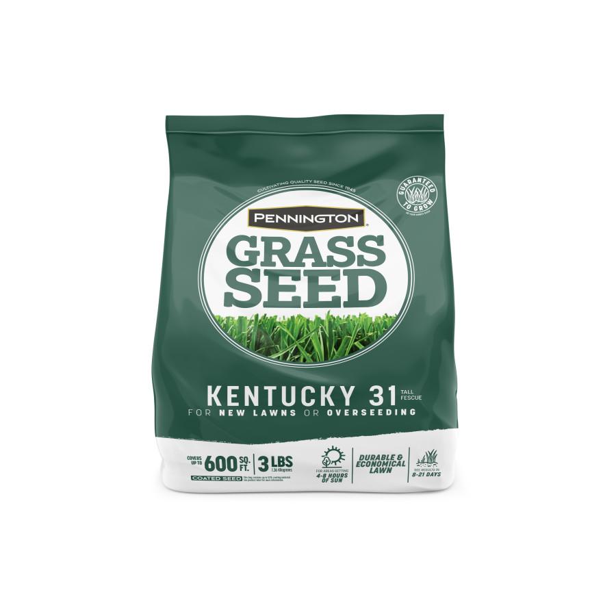 Pennington Kentucky 31 Tall Fescue Penkoted Grass Seed 8ea/3 lb