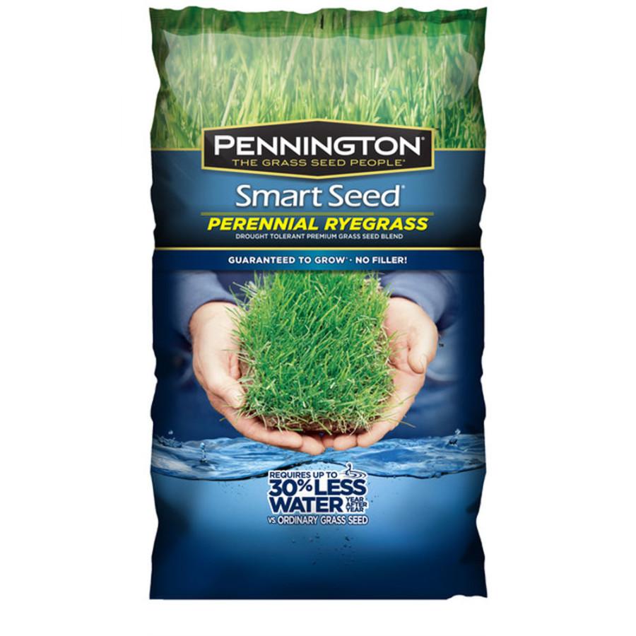 Pennington Smart Seed Perennial Ryegrass Blend 8ea/3 lb