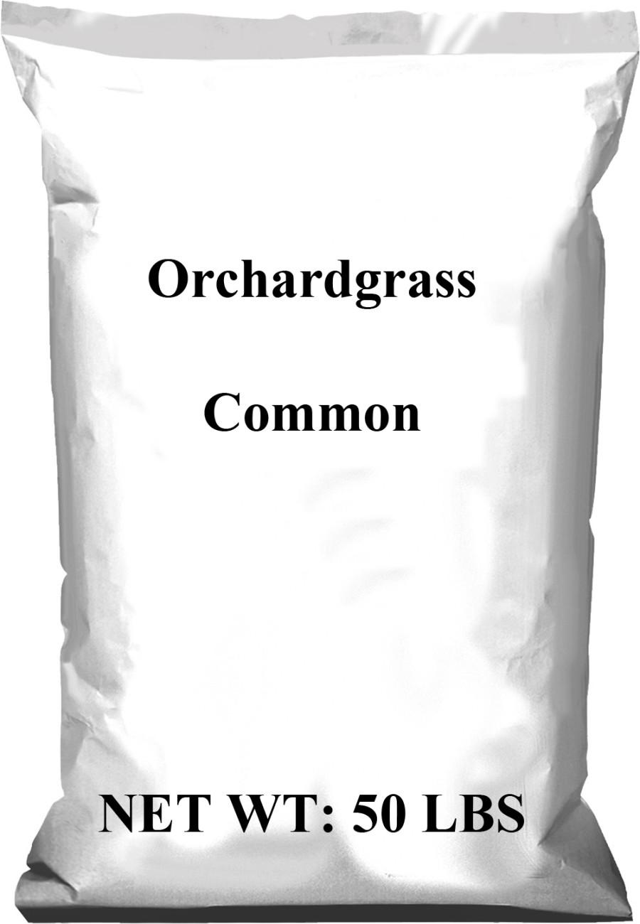 Pennington Orchardgrass Common 1ea/50 lb