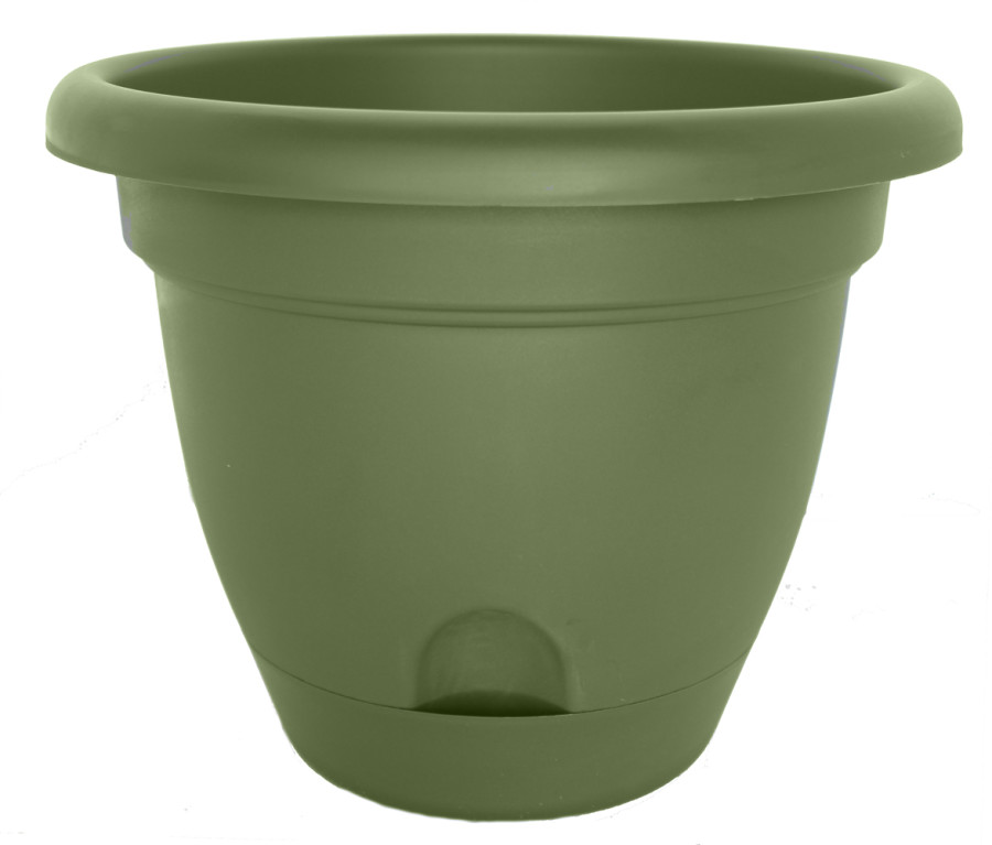 Bloem Lucca Planter Living Green 6ea/10 in