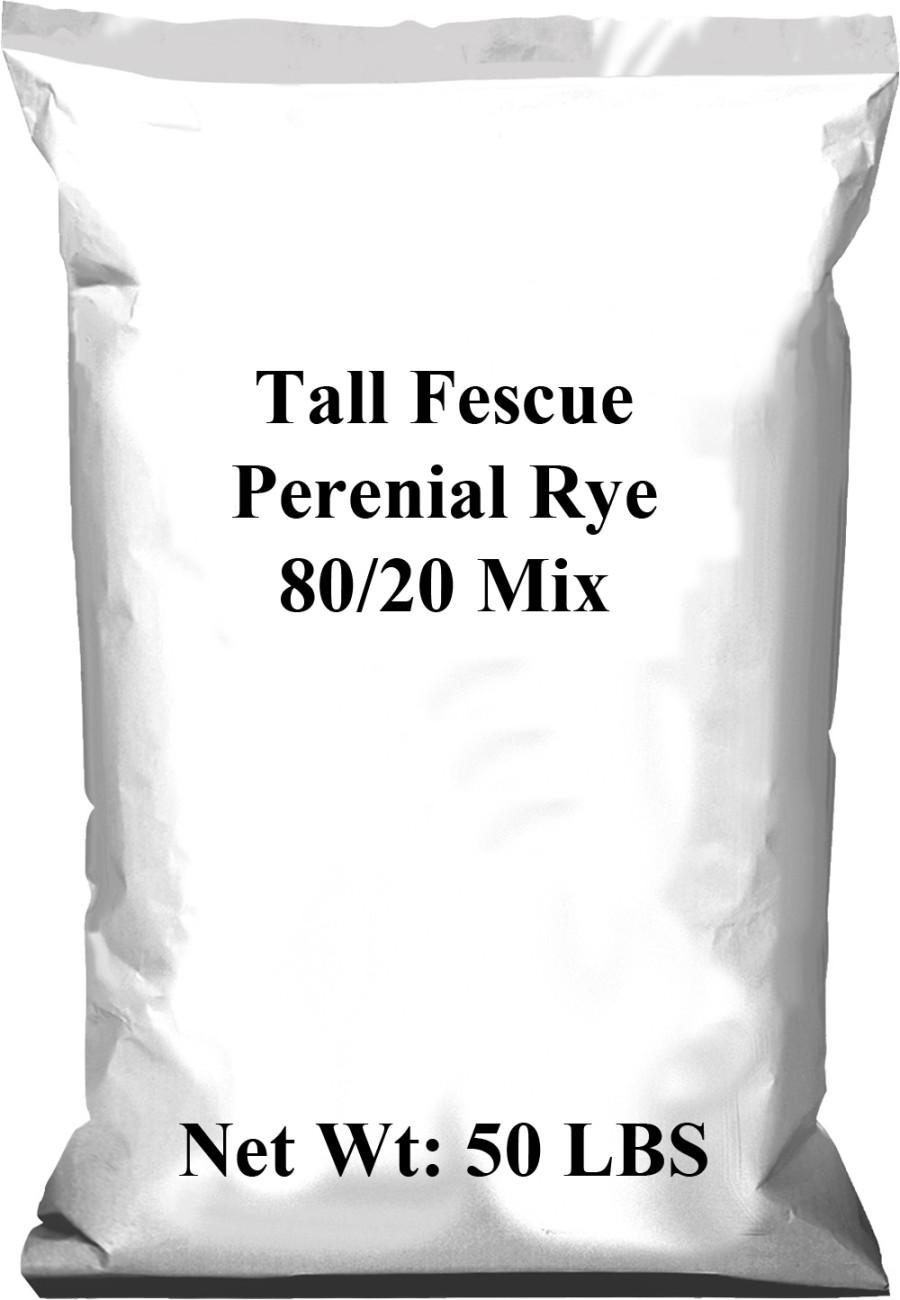 Pennington Lofts 80/20 Mix Tall Fescue/Perennial Ryegrass 1ea/50 lb